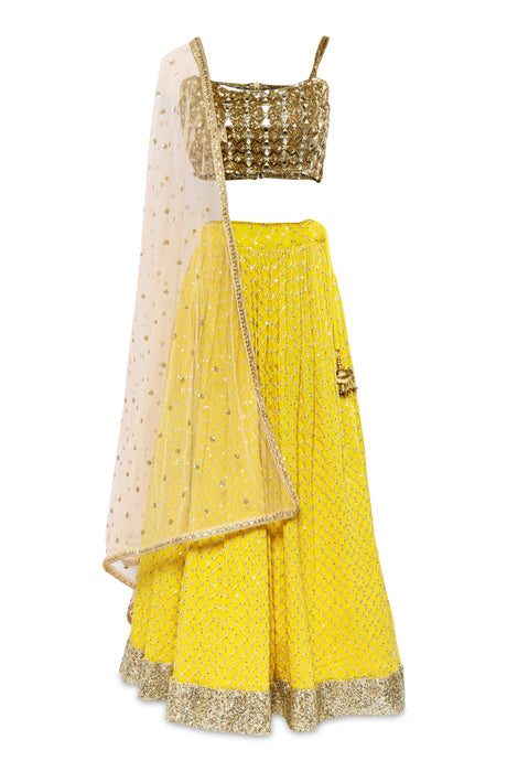 Gold and Yellow Embellished Lehenga