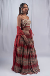 Bhumika Sharma Burgundy Colored Lehenga