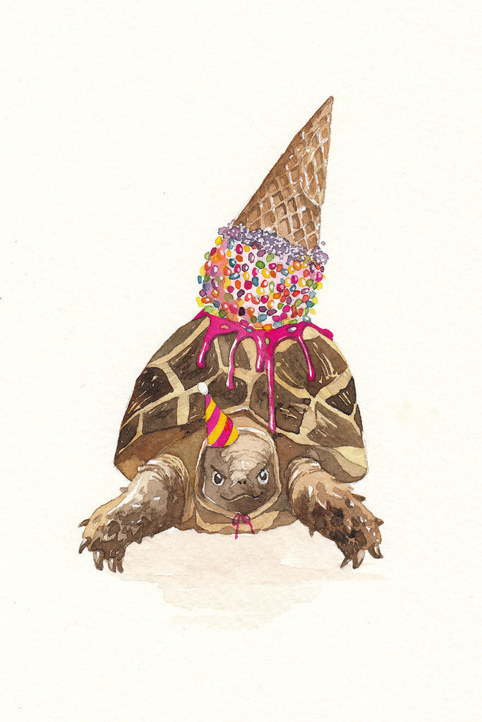 Party Turtle