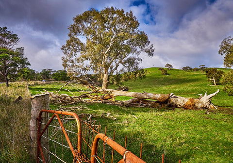 Greeting Card: Farm at Moyston, Victoria