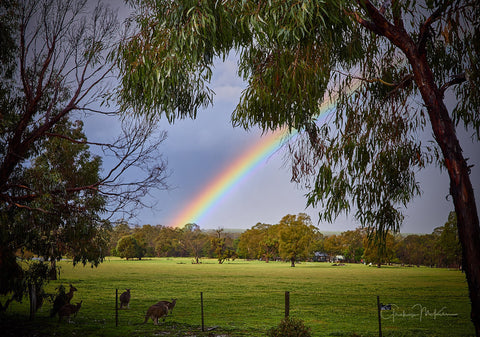 Digital Download Grampians Rainbow Low Res