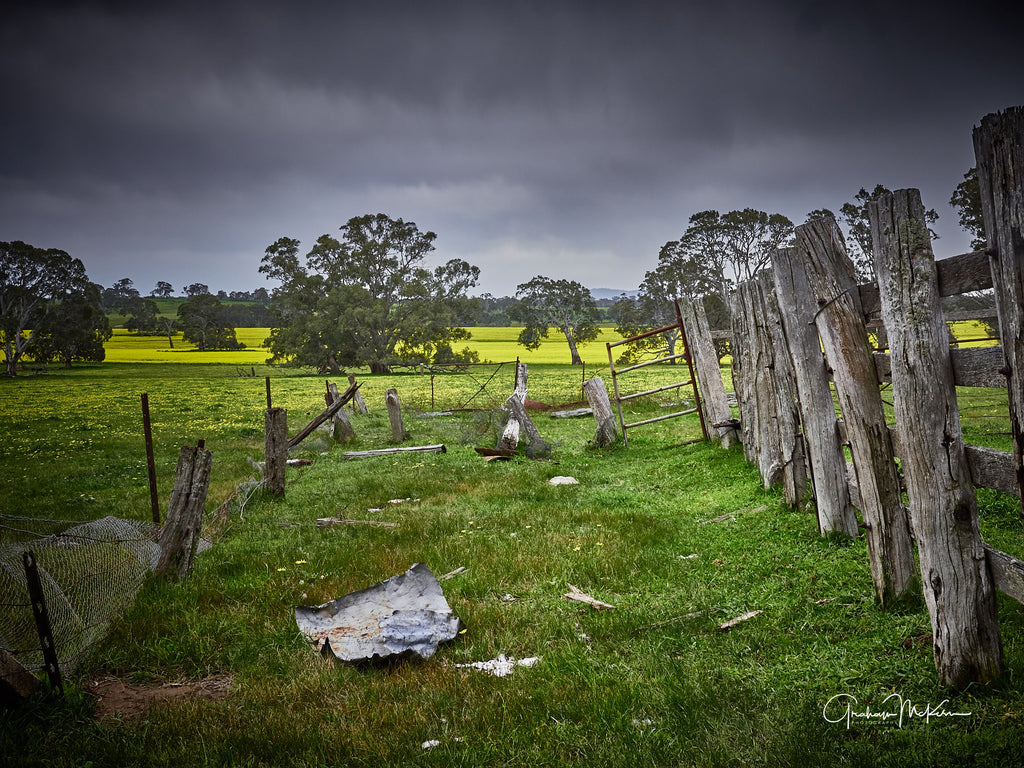 Digital Download Grampians Farm Life Low Res