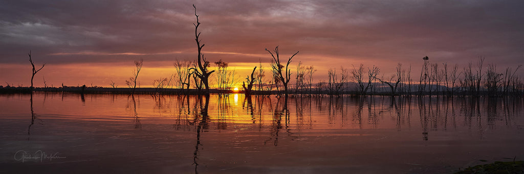 "Canvas Print Lake Fyans at Dawn Panorama 8"" x 24"""
