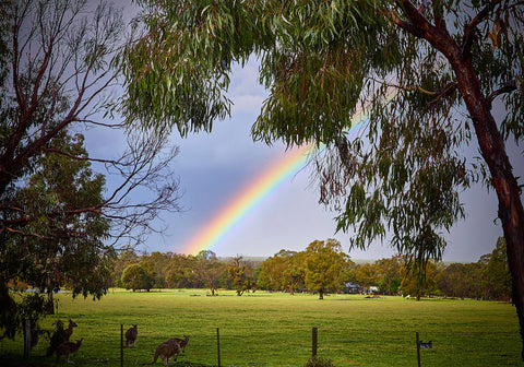 Greeting Card: Grampians Rainbow, Victoria