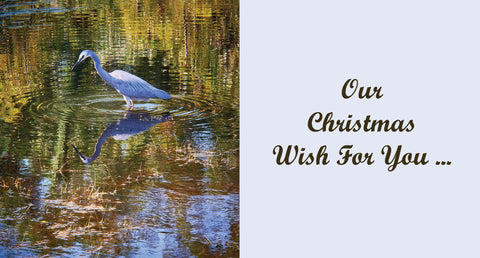 Personalised Christmas Card - White faced heron