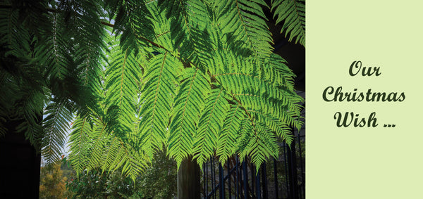Personalised Christmas Card - Tree Fern