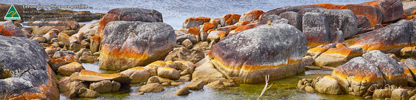 Greeting Card Panorama, Bay of Fires, Tasmania