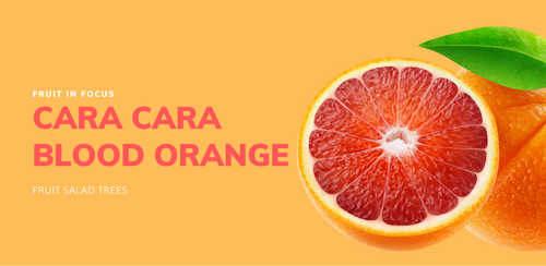 Cara Cara Blood Orange grows in All Australian Climates very sweet with pink flesh and no veins