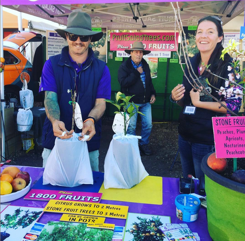 Fruit Salad Trees set up at AgQuip Gunnedah 2019