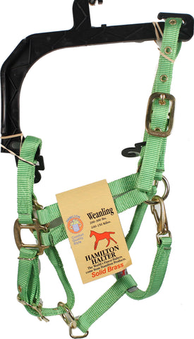 3/4-inch Adjustable Chin Strap Halter With Snap
