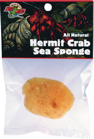 hermit crab sea sponge       72
