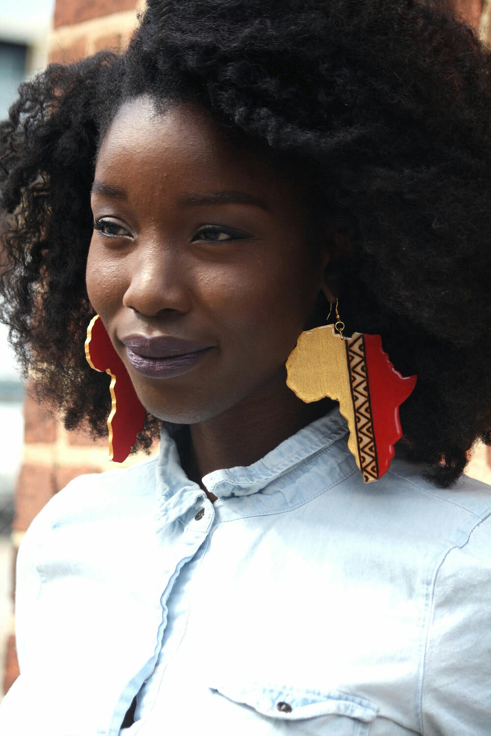Color block Africa earrings - Wild Child Dzigns