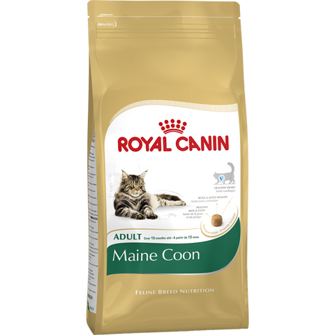 Royal Canin - Mainecoon - XclusivePets