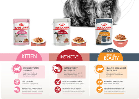 Royal Canin Pouches