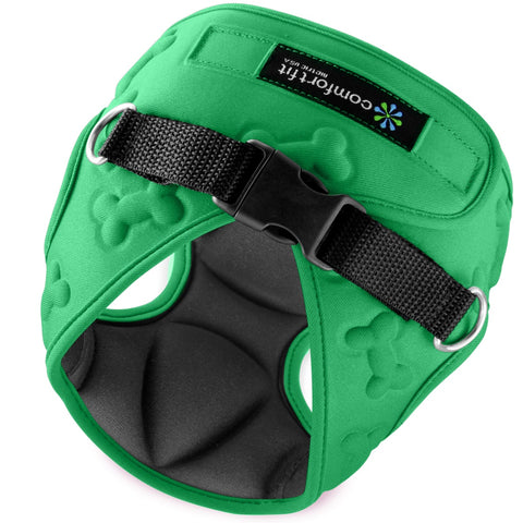 Small Dog Harness in Green