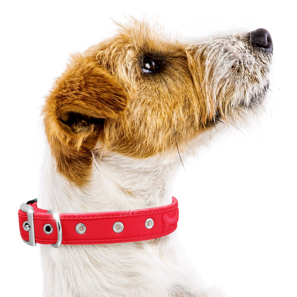 Comfort Fit Pet Dog Collars
