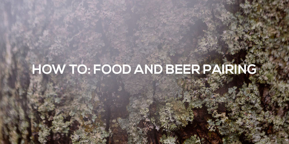 How to pair beer with food