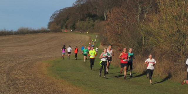 Top 10 Cross Country Running Tips