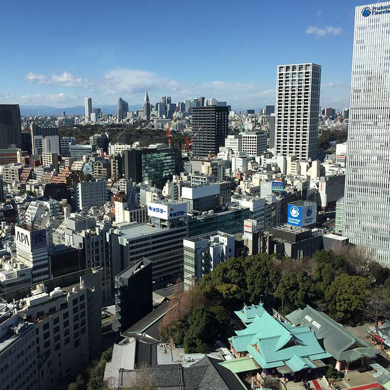 View from the Capitol Tokyu Hotel