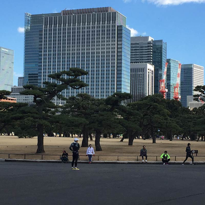 The outer Palace gardens with Yurakucho and Marunouchi behind