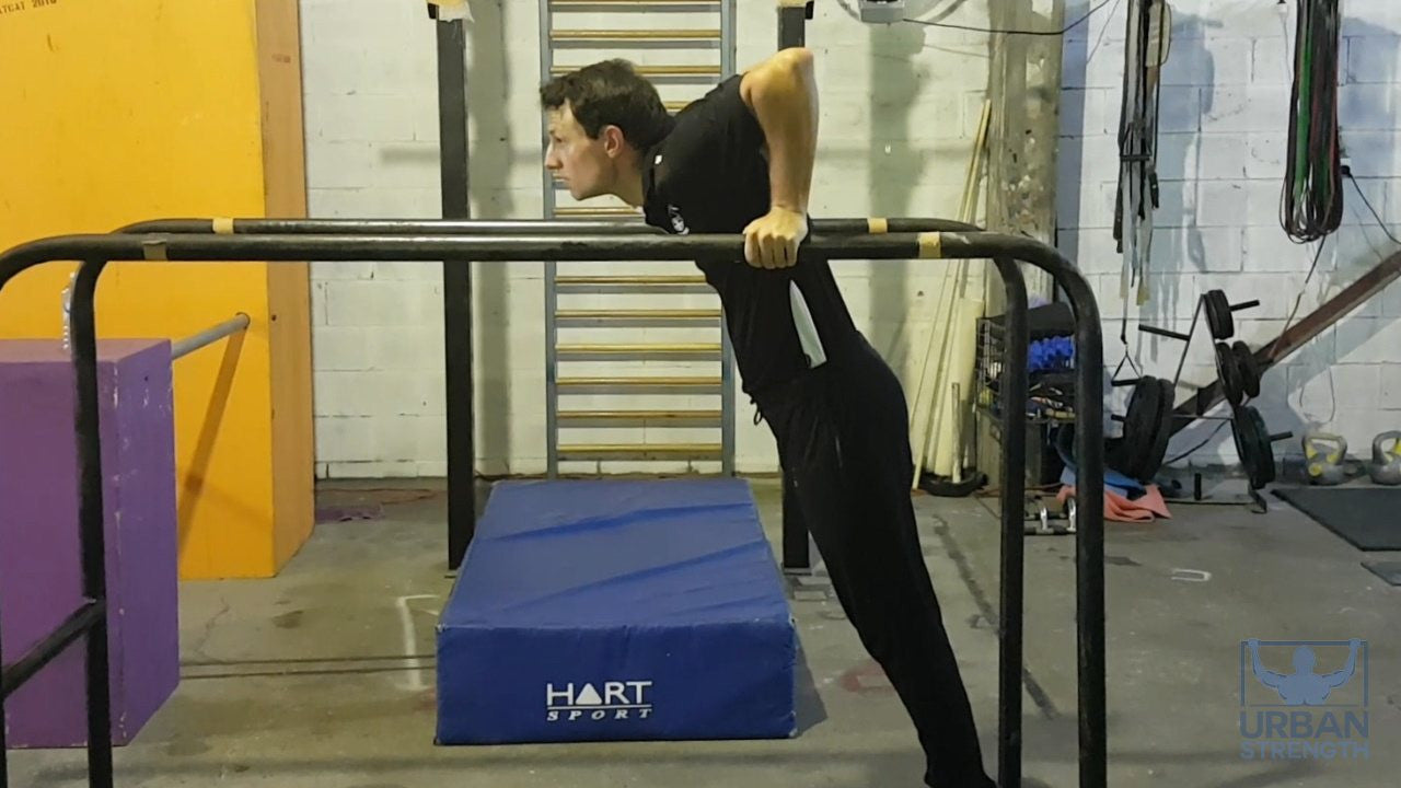 Parallel bar dips exercise