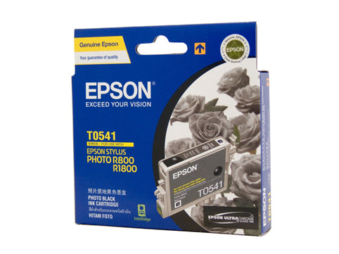 Epson T0541  Inkjet Cartridge