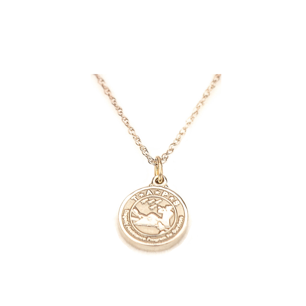 TAPS Sterling Silver Necklace and Logo Charm