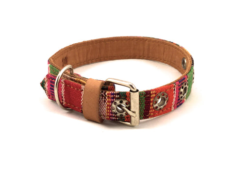 Quiltro Collar & Leash 10""