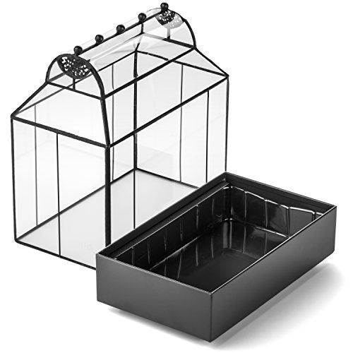 Barrel Roof Wardian Case Terrarium