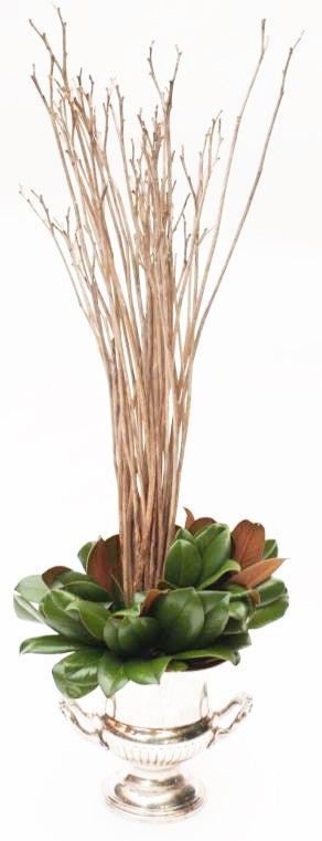 Weston Farms Stagg Daylily Bouquets (Pair)