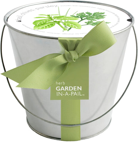 Herb Garden in a Pail