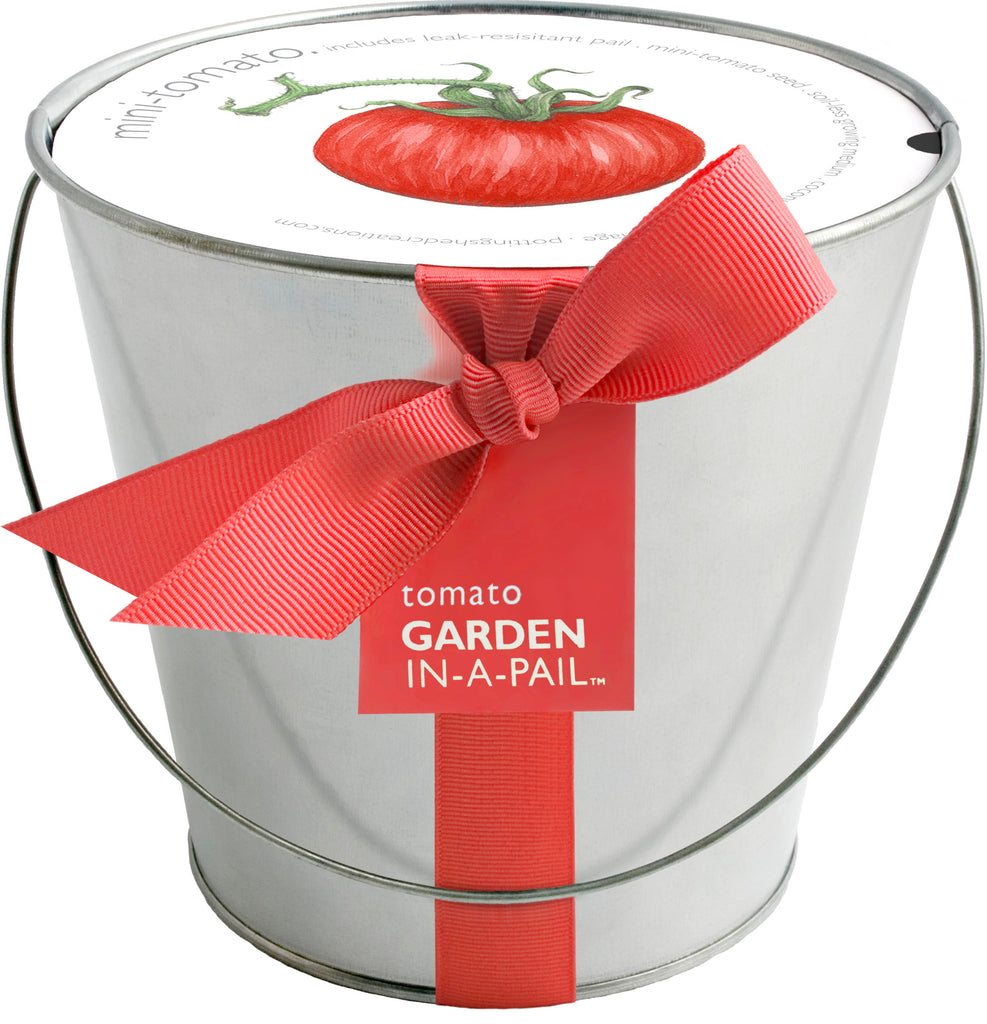 Tomato Garden in a Pail