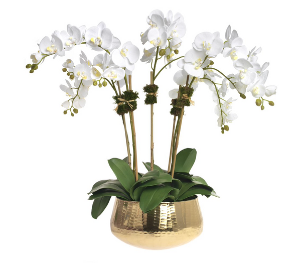 Phalaenopsis, 5 stems, in gold bowl - Faux Floral Couture