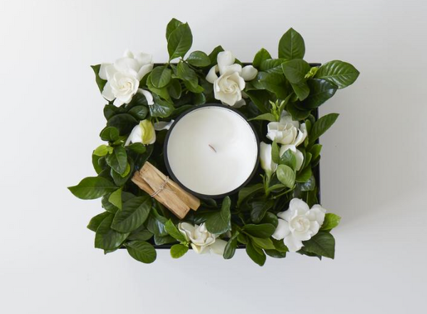 "Large Wide Wick ""Campfire"" Vine and Bloom Box"