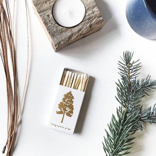 Lodgepole Pine Tree Mini Matchbox
