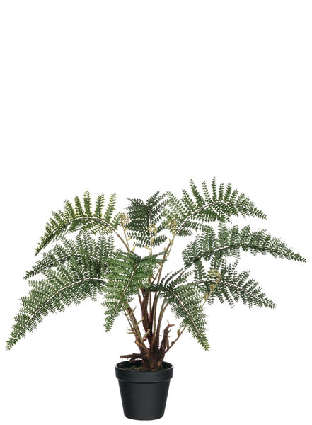 "Fern Potted Plant-25"" High"