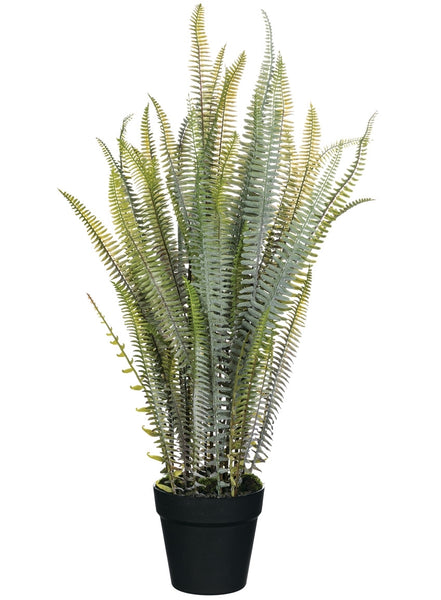 "Fern Potted Plant-30"" High"