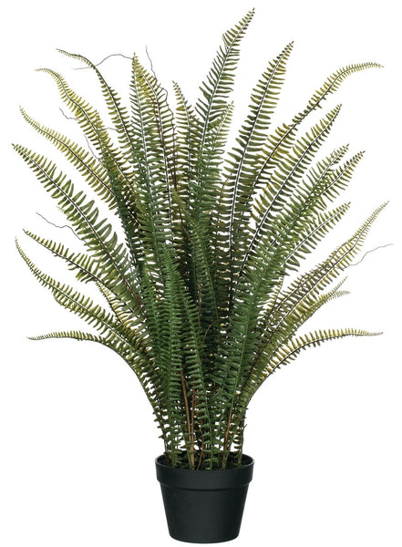 "Potted Fern-38"" High"