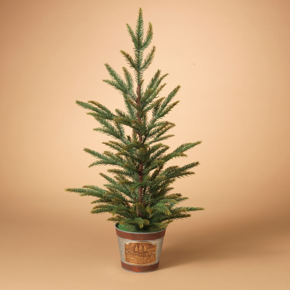 "Pine Tree in ""Cmas Tree Farm"" Pot"