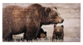 Large Mama Bear and Cubs Canvas