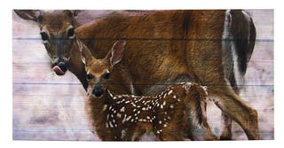 Large Mama Doe and Fawn Canvas