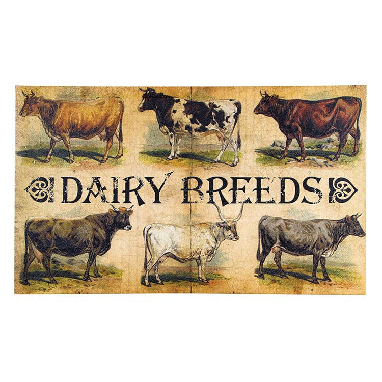 Dairy Breeds Canvas