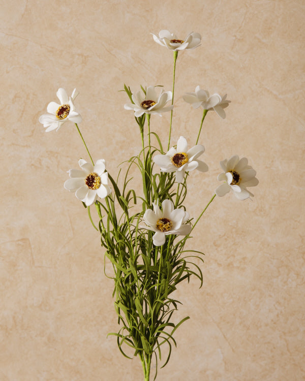 Spray - Coreopsis White