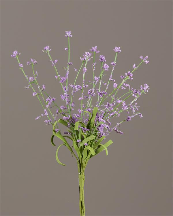 Pick - Gypsophila, Purple