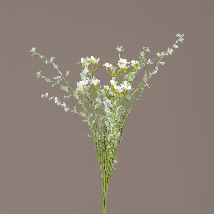 Pick - White Cottage Yarrow