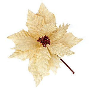 Cream Burlap Poinsettia