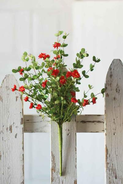 Day Daisy Bush | 18"