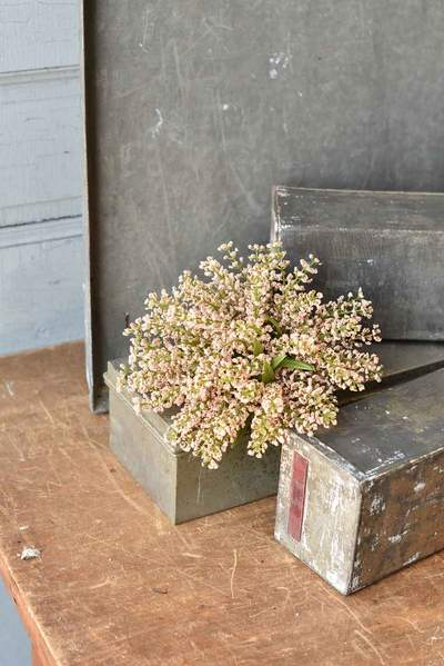 Bursting Astilbe Half Sphere | 9"