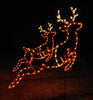 Pair of Reindeer - Animated