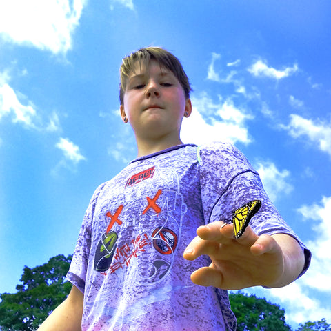 Boy with butterfly on his hand at CACE booth at Falcon Ridge Folk Festival 2019